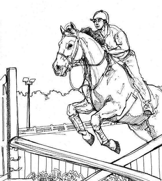Kleuren Nu Paard Met Ruiter Springt Over Hindernis