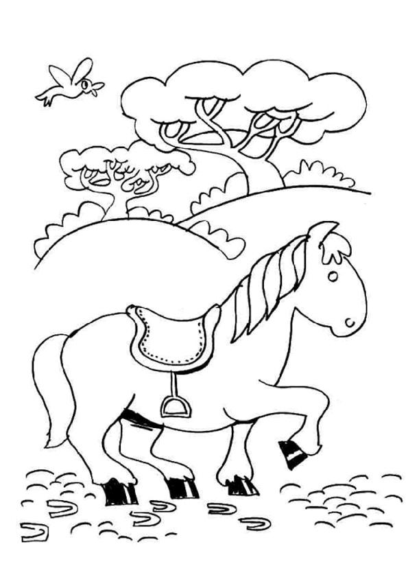 Gratis kleurplaat paard 45