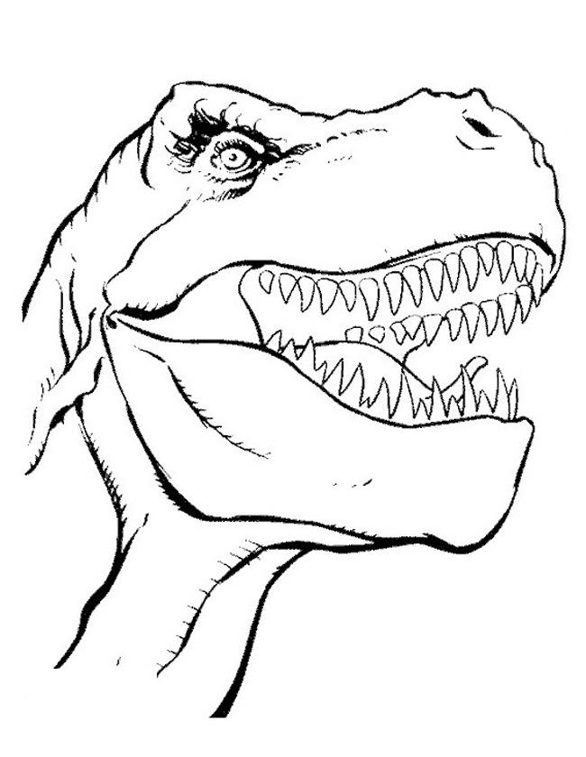 Gratis kleurplaat Kop van een tyrannosaurus rex