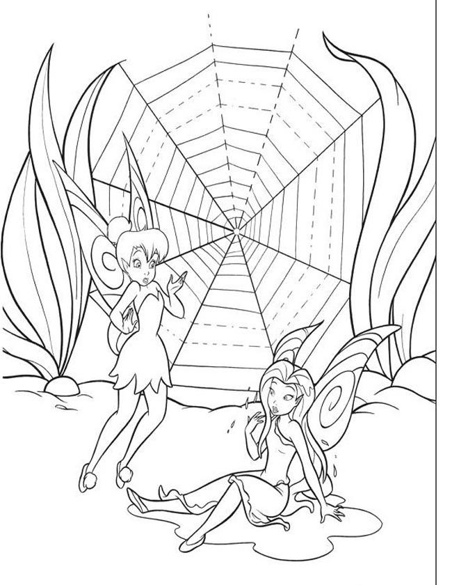Gratis kleurplaat bij een spinneweb
