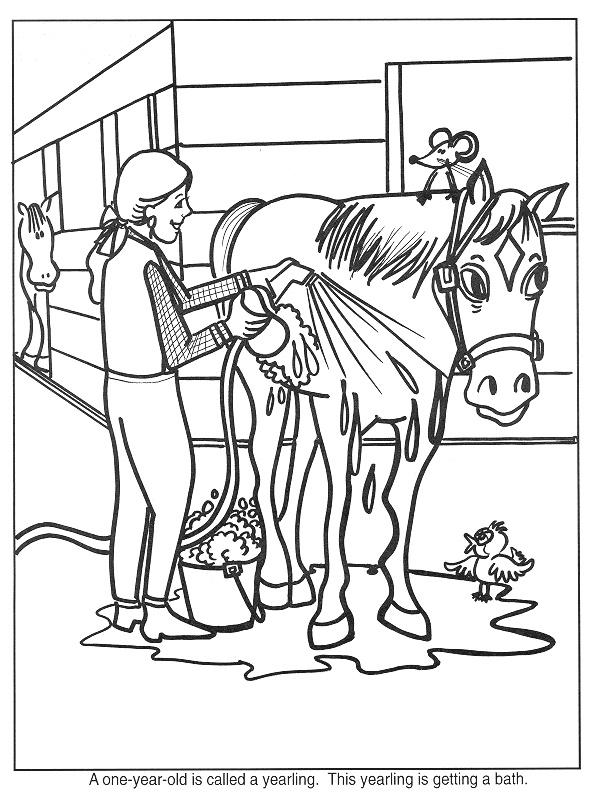 Gratis kleurplaat paard wordt afgespoeld