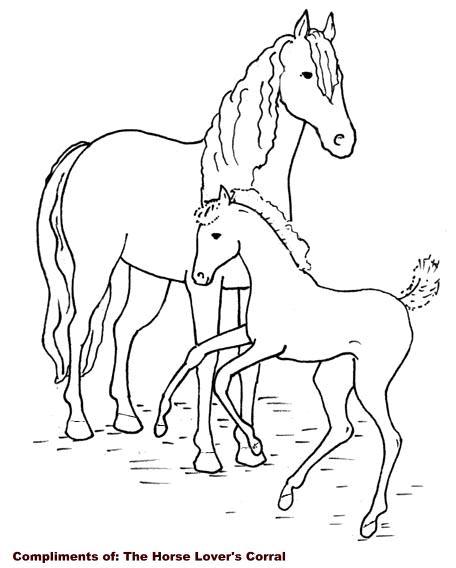 kleurplaten van paarden en veulens
