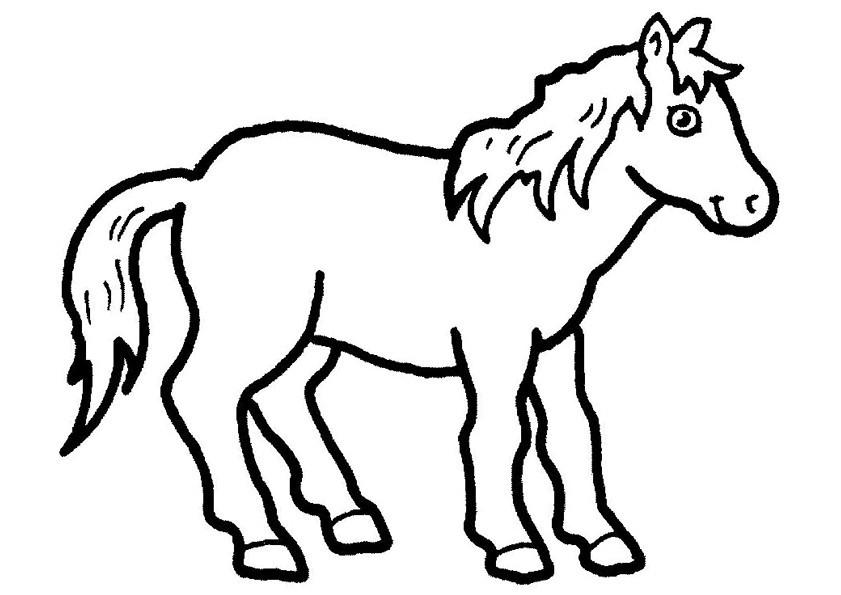 Gratis kleurplaat paard 44