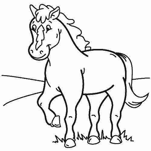 Gratis kleurplaat paard 9