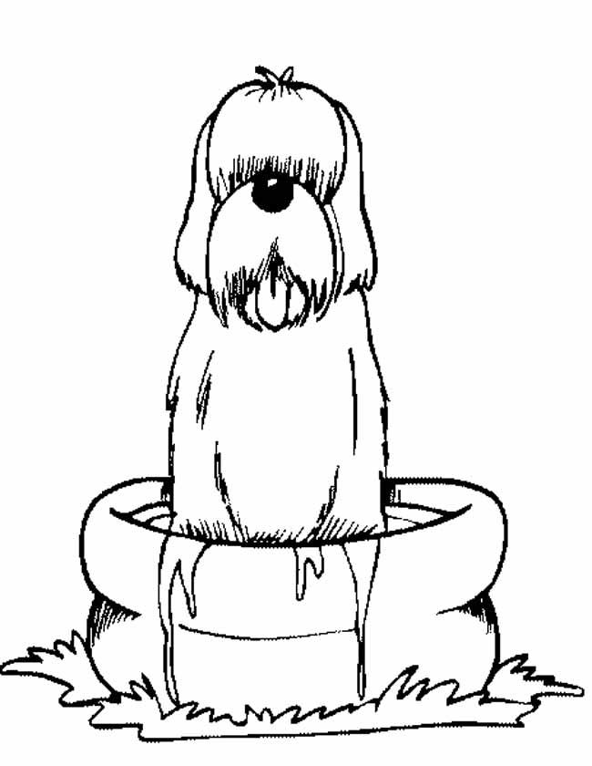 Gratis kleurplaat Hond wordt gewassen