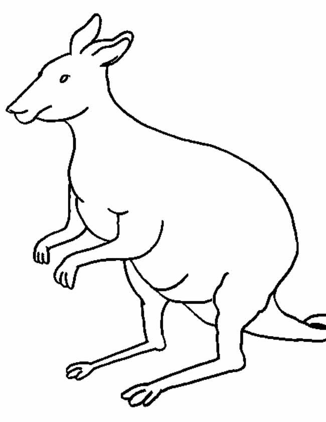 Gratis kleurplaat Kangoeroe zit klaar om te springen