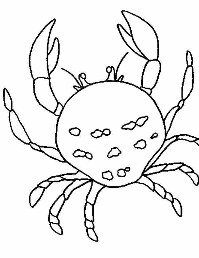 Gratis kleurplaat Krab