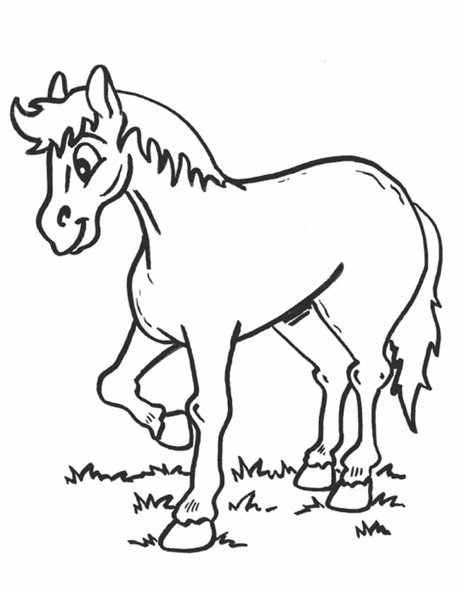Gratis Kleurplaten Natuur.Kleuren Nu Paard In De Natuur Kleurplaten